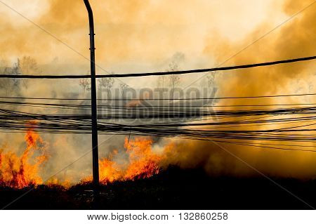 wildfire at side of road sihouette background