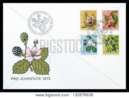 SWITZERLAND - CIRCA 1973 : First day cover letter printed by Switzerland, that shows fruits of the forest.