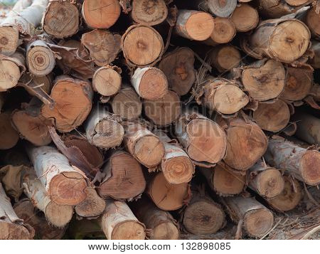 a stack of firewood on grass. Wood timber pile.