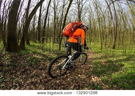 Man cyclist bikes singl track in the green forest