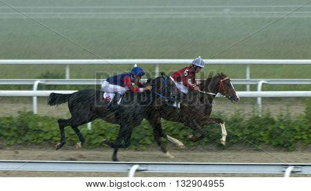 Horse race for the prize Ponomareva in Pyatigorsk,Northern Caucasus,Russia.