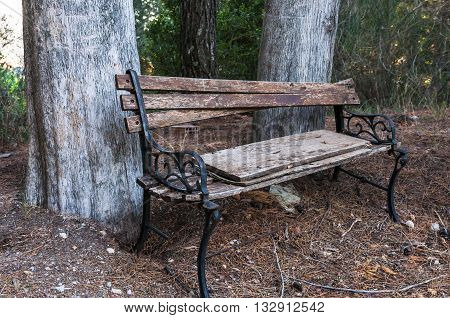 Old broken bench on the edge of a pine forest in the mountains of the Peloponnese. Greece.