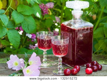 Maraschino liqueur with fresh cherries in the garden