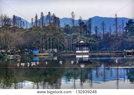 Blue Mountain Lotus Garden West Lake Hangzhou Reflection Zhejiang China .