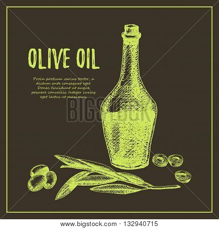 Olive branch hand drawn sketch illustration. Olive vector illustration. Olive branch hand drawn. Olive branch vintage designs. Olive branch label.