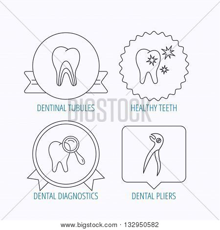 Healthy teeth, dentinal tubules and pliers icons. Dental diagnostics linear sign. Award medal, star label and speech bubble designs. Vector