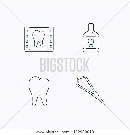 Mouthwash, tooth and dental x-ray icons. Tweezers linear sign. Flat linear icons on white background. Vector