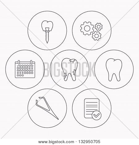 Dental implant, caries and tooth icons. Tweezers linear sign. Check file, calendar and cogwheel icons. Vector