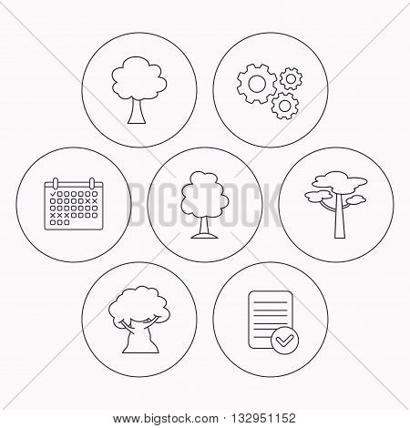 Pine tree, oak-tree icons. Forest trees linear signs. Check file, calendar and cogwheel icons. Vector