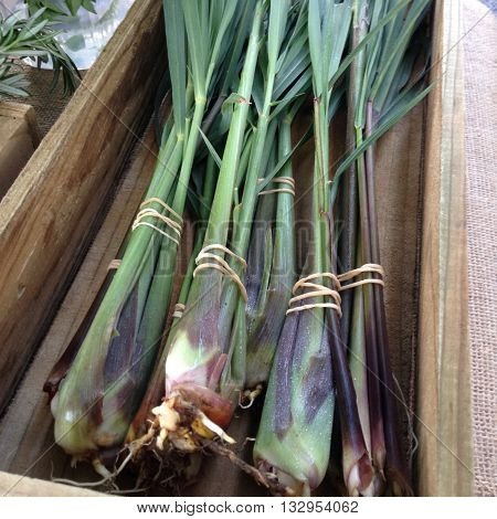 Organic lemongrass bunches for sale at a farmers market. The herbs are bunched with elastic bands, and presented in a wooden box. Photographed in New Zealand.