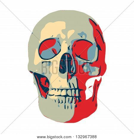 Illustration of human skull that can be used for halloween. Isolated on white background. Vector EPS10.