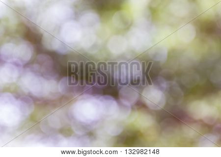 Dreamy Soft Glow Romantic Mood Background, Abstract Sparkle Green And Pastel Purple Violet Bokeh Bac