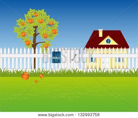 The Garden area in rural terrain.Vector illustration