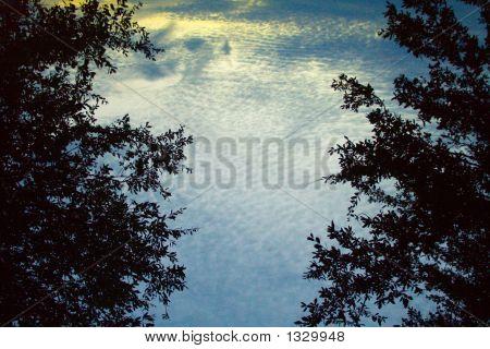Water Skylight
