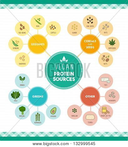 Vegan protein food sources infographic with food icons and categories