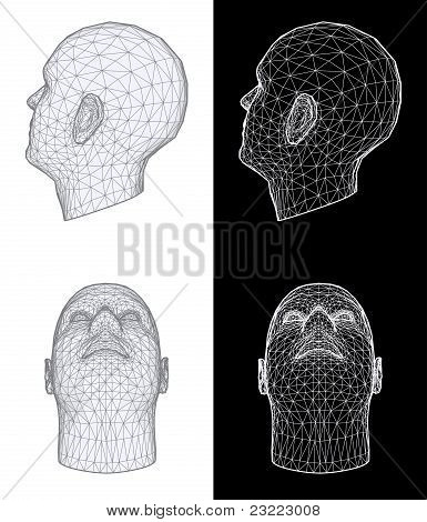 Human Head. Vector Illustration