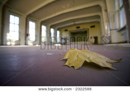 Autumn Leaf On The Dancefloor