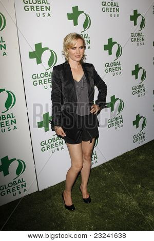 LOS ANGELES - MAR 3: Radha Mitchell at the Global Green USA 7th Annual Pre-Oscar Party 'Greener Cities for a cooler Planet at Avalon in Los Angeles, California on March 3, 2010