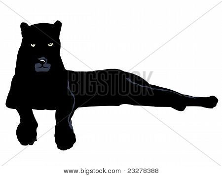 schwarz panter