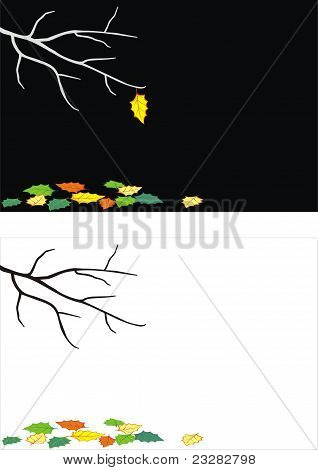 Trees branch with lonely autumn leaf