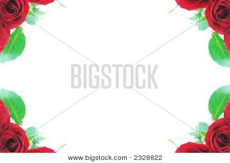 Beautiful Red Roses Adorn The Corner Borders