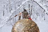 Strong Spartan Warrior Is Waiting For Danger In Snowy Forest. poster