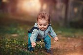 Cute little baby boy collecting wild flowers on the fresh floral field in the park, spending warm sp poster