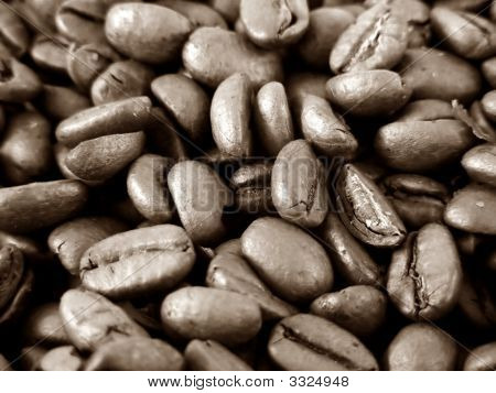 Close Up Of Coffee Beans In Duo Tone