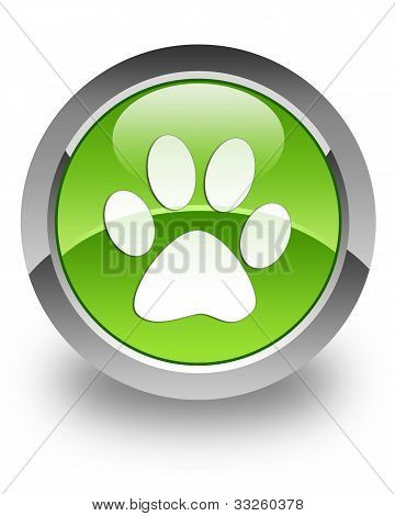 Animal footprint glossy icon