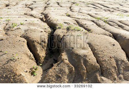 Soil Erosion To Overgrazing Leading