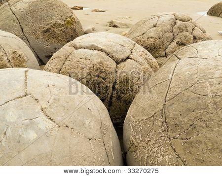 Closeup of famous spherical Moeraki Boulders, NZ