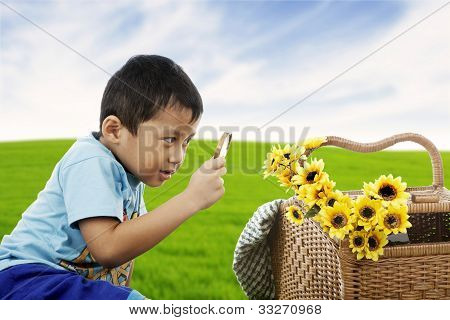Examining Flowers