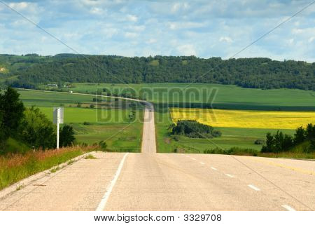 Beautiful Summer Valley Road