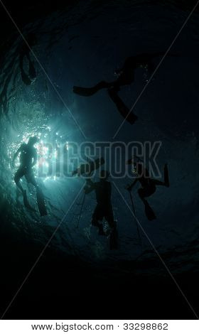Group Of Divers Underwater Spearfishing