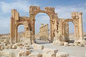 picture of euphrat  - City of Palmyra  - JPG