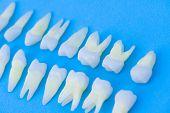 Prosthetic dentistry  White teeth on blue background Oral dental hygiene  Dental health concept  Ora poster