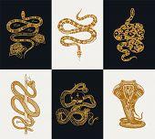 Milk Snake With Roses, Skeleton Royal Python With Skull, Reptile With Sword, Venomous Cobra. Poisono poster