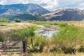 Oxbow In Summer On The Penticton River Channel, An Important Wildlife Habitat poster