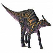 Saurolophus Osborni Dinosaur 3d Illustration - Saurolophus Osborni Was A Hadrosaur Herbivorous Dinos poster
