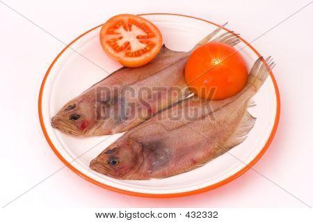 Megrim Fish