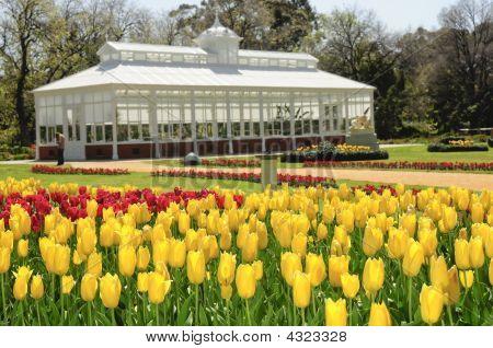 Bendigo Conservatory