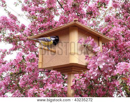 Birdhouse In Pink Blossoming Garden