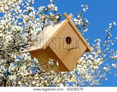 Birdhouse In Garden