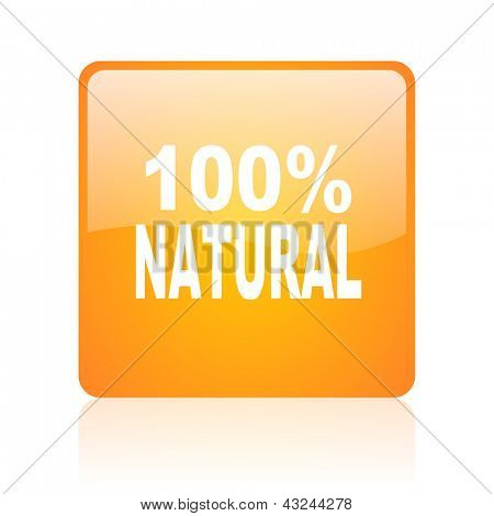 natural orange square glossy web icon