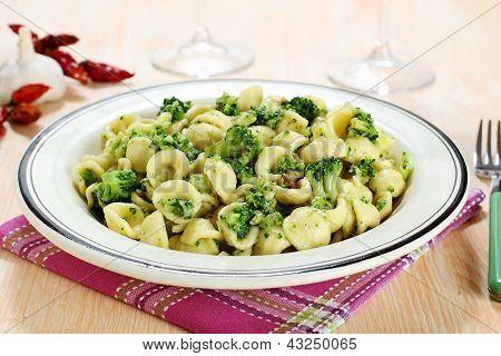 italian pasta orecchiette with broccoli in dish