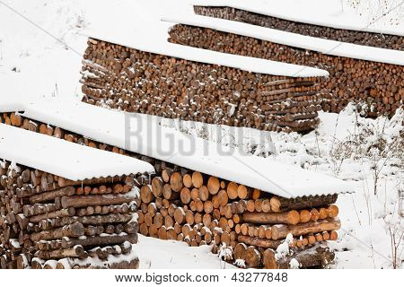 Renewable heat source firewood stacked in winter