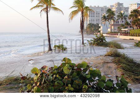 Waves Washed Ashore