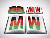 National Flag concept of Malawi. Editable vector format.