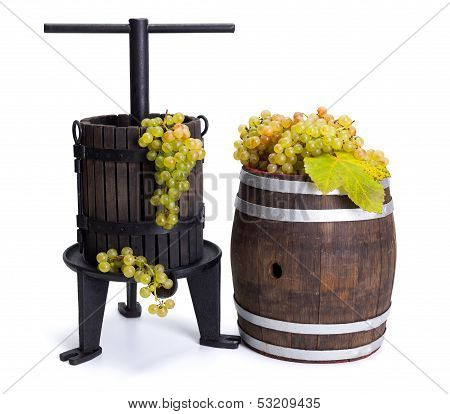Grape Pressing Utensil And Barrel With White Grapes