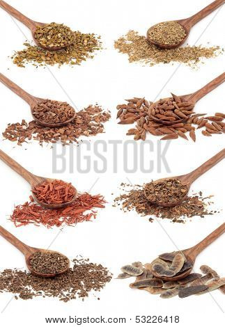 Medicinal herb selection in olive wood spoons over white background.